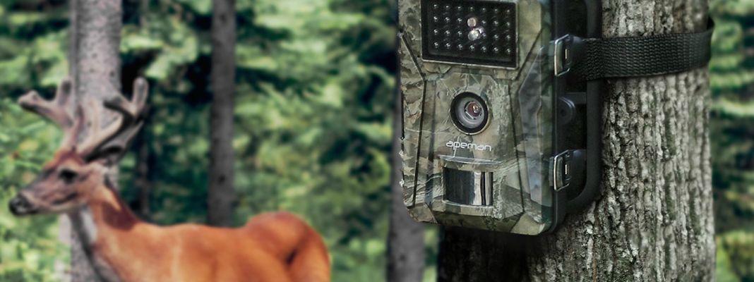 camera de chasse